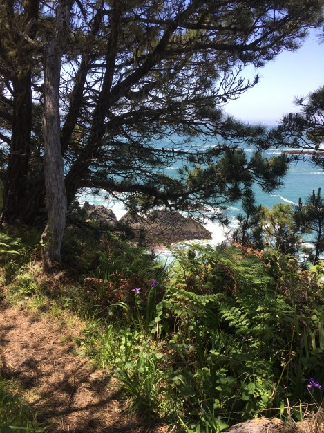 Spectacular views of the Mendocino coast