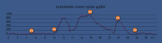 Course elevation/gain profile
